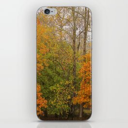 Leaning Into Autumn iPhone Skin