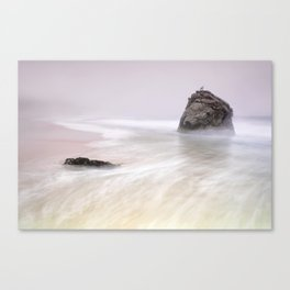 Garrapata Beach Fog Canvas Print
