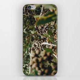 Gumtree 2 iPhone Skin