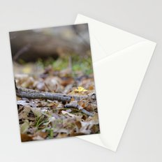 Seedling - A Stationery Cards