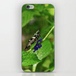 A Dangling Dalliance iPhone Skin
