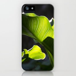 Green Contrast - Light and Dark iPhone Case