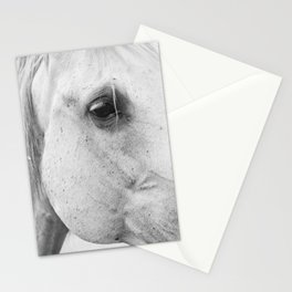 Horse Photography | Wildlife Art | Farm animal | Horse Eye Closeup | Animal Photography Stationery Cards