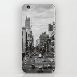 Highline View II iPhone Skin