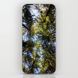 Redwood Canopy iPhone Skin