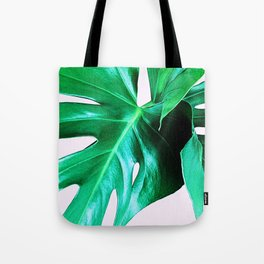 Cheese Plant Leaves Tote Bag