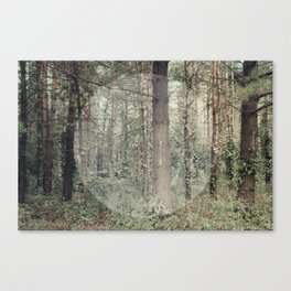Cycle (Forest) Canvas Print