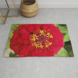 Red, RED Zinnia Rug