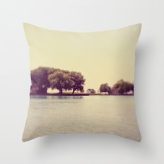 These Are The Days Throw Pillow