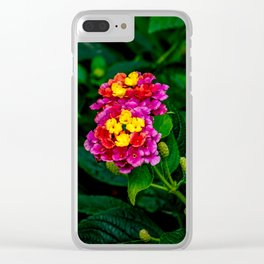 Flower. Clear iPhone Case