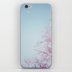 Peek-a-Boo Moon iPhone & iPod Skin