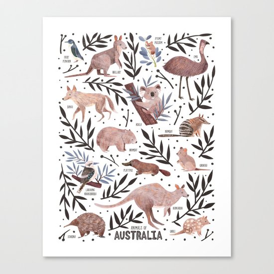 Animals of Australia Field Guide Canvas Print