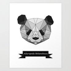 Ailuropoda Melanoleuca Art Print