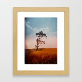 einsamkeit Framed Art Print
