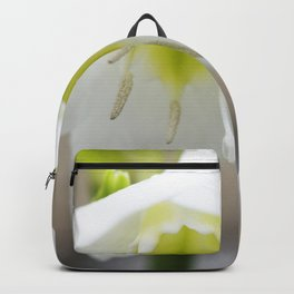 Amazon Lily Backpack