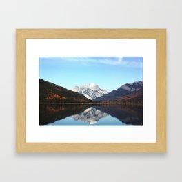 White Swan Lake Framed Art Print