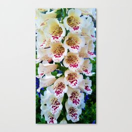 Lovely Spotted Flowers Canvas Print