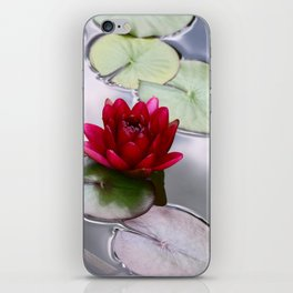 Dark Red Water Lily iPhone Skin