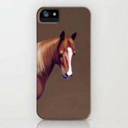 Sensitive Pony iPhone Case