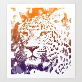 tiger lights Art Print