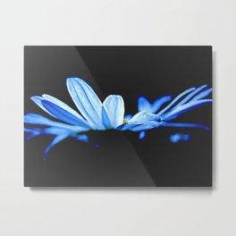 Rhapsody in blue Metal Print