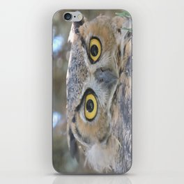 Young Owl at Noon iPhone Skin