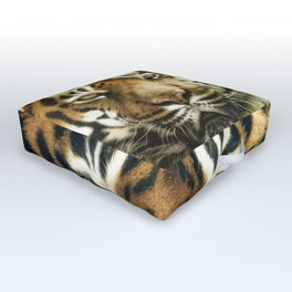 Face of Tiger Outdoor Floor Cushion