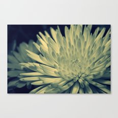 Cross Flower Canvas Print