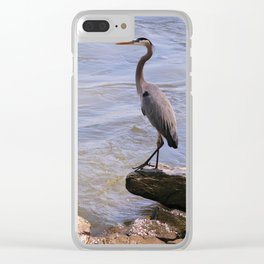 Fishing From the Bank Clear iPhone Case