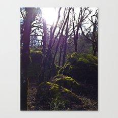 Passage To Somewhere Canvas Print