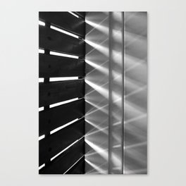 Game of light Canvas Print