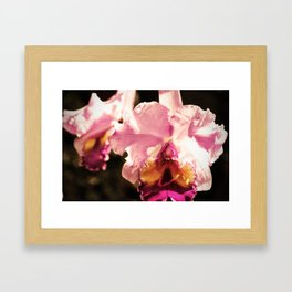 Exhale their pallor like scent Framed Art Print