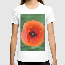 Floating poppy T-shirt