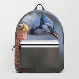 The final kernels Backpack