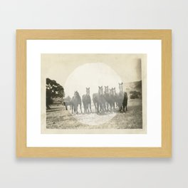 Band of Horses - White Framed Art Print