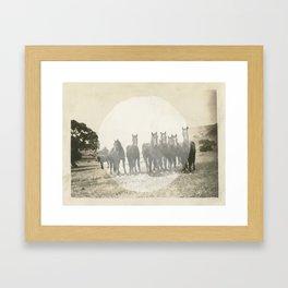Band of Horses - White Framed Art Print