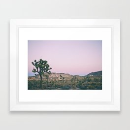 Joshua Sunset Framed Art Print