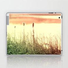 Reeds Laptop & iPad Skin