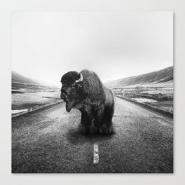 Lonely Hiker Canvas Print