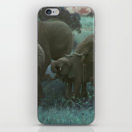 African Elephant Family Drinking in Blue iPhone Skin