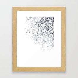 BLACK BRANCHES Framed Art Print