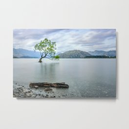 A story of beauty and survival at lake Wanaka, New Zealand. Metal Print