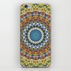 Elemental Spirits iPhone & iPod Skin