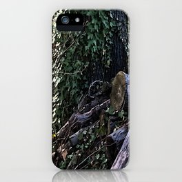 Graveyard of the Trees iPhone Case