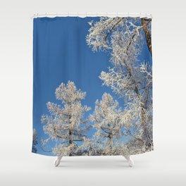 larch in snow, Siberia, Russia Shower Curtain