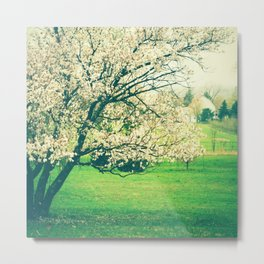 Meet Me Under the Old Apple Tree Metal Print