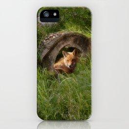 Fox in a Log iPhone Case