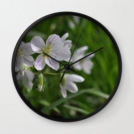Spring Beauties Wall Clock