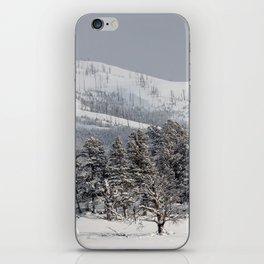 Yellowstone National Park - Blacktail Deer Plateau Panorama iPhone Skin