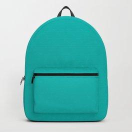 Classic Aqua Blue Solid Color Backpack